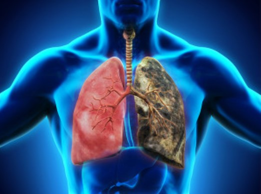 COPD riddled lung understand the breathing process