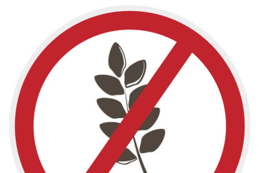 what does gluten-free mean