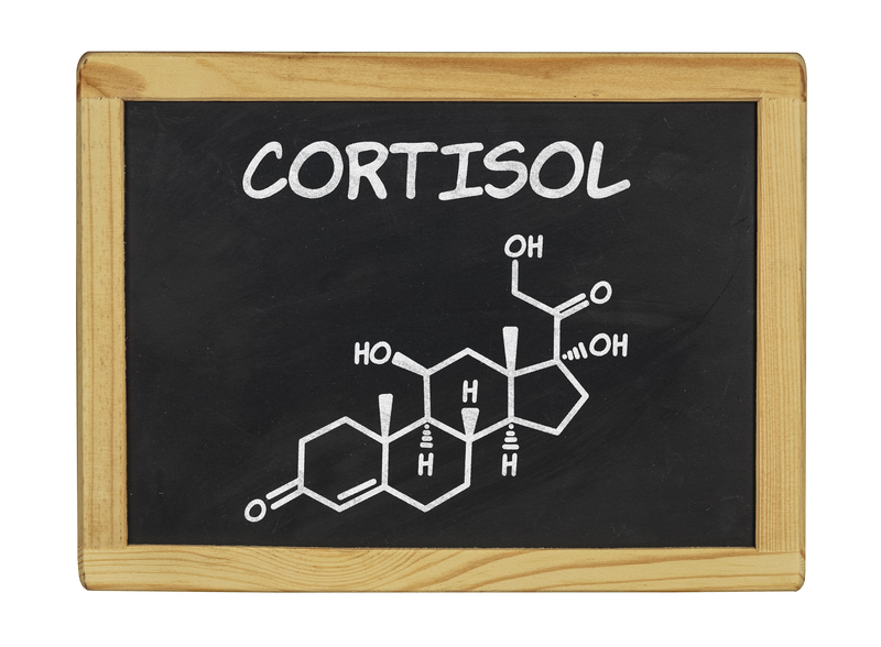 what is cortisol