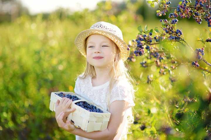 Child holding a basket of organic produce